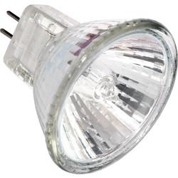Philips 12V MR16 Halogen Lamp