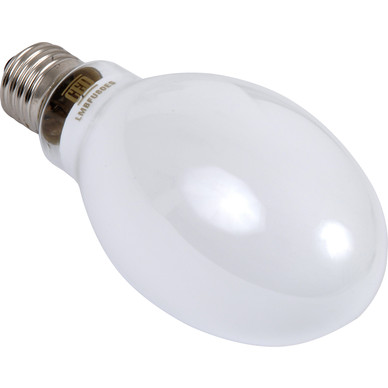 Elliptical Mercury Lamp