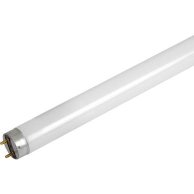 Triphosphor fluorescent