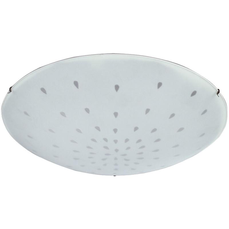 IP21 Aqua Rain Ceiling Light